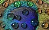 Funcosil FC impregneercreme - 40% werkzame stof! (12,5 Liter)_12